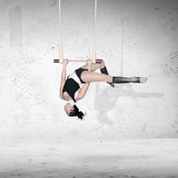 Les_7_doigts_PSY_danica_trapeze_VARIAL.ORG
